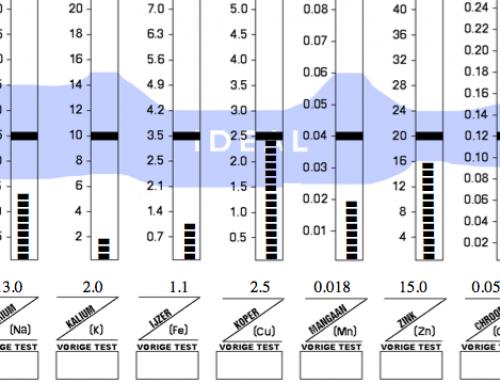Verdiepingsworkshop Nutritional Balancing & HMA